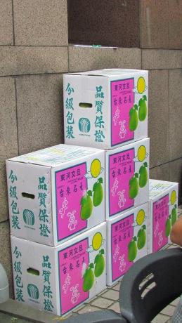 柚子做為105年捐血活動的贈品