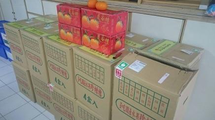長濱國小茂谷柑義賣